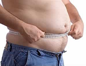 stomach fat leptin